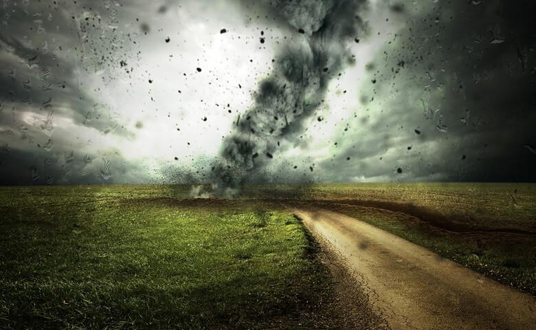 Acciones políticas urgentes para atender el cambio climático