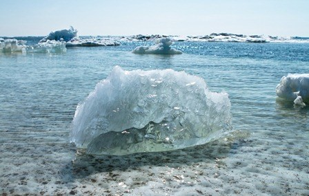 efectos calentamiento global