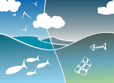 Los ecosistemas mas fragiles
