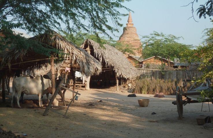 Los Mazatecos: ubicación, vestimenta, lengua y gastronomía